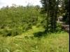 Tanah di daerah BANJARNEGARA, harga Rp. 2.600.000.000,-