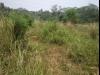 Tanah di daerah DEPOK, harga Rp. 3.600.000.000,-