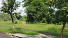 Apartement di daerah PASURUAN, harga Rp. 50.000.000,-