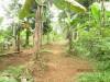 Tanah di daerah BOGOR, harga Rp. 1.056.000.000,-