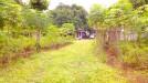 Tanah di daerah DEPOK, harga Rp. 7.500.000,-