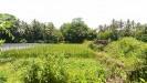 Tanah di daerah BANTUL, harga Rp. 1.600.000,-