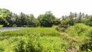 Tanah di daerah SLEMAN, harga Rp. 1.590.000,-