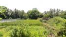 Tanah di daerah SLEMAN, harga Rp. 56.000.000,-