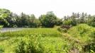 Tanah di daerah SLEMAN, harga Rp. 580.000.000,-