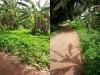 Rumah di daerah DEPOK, harga Rp. 725.000.000,-