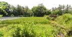 Tanah di daerah SLEMAN, harga Rp. 880.000.000,-
