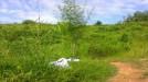 Tanah di daerah BALIKPAPAN, harga Rp. 75.000,-