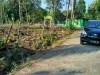 Tanah di daerah BANTUL, harga Rp. 99.000.000,-