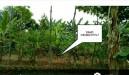 Tanah di daerah TANGERANG, harga Rp. 600.000.000,-