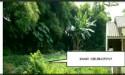 Tanah di daerah DEPOK, harga Rp. 870.000.000,-