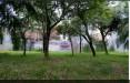 Rumah di daerah DEPOK, harga Rp. 990.000.000,-