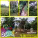 Tanah di daerah BOGOR, harga Rp. 22.000.000,-