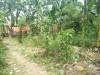 Tanah di daerah BEKASI, harga Rp. 1.192.500.000,-