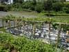 Tanah di daerah CIANJUR, harga Rp. 80.000.000,-