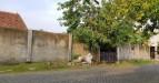 Tanah di daerah SURABAYA, harga Rp. 4.790.000.000,-