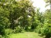 Tanah di daerah BULELENG, harga Rp. 650.000.000,-
