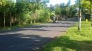 Tanah di daerah KARANGANYAR, harga Rp. 350.000.000,-