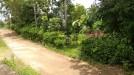 Tanah di daerah KARANGANYAR, harga Rp. 450.000.000,-