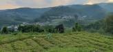 Tanah di daerah BATU, harga Rp. 1.400.399,-