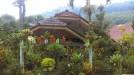 Rumah di daerah BATU, harga Rp. 750.000,-