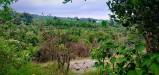 Tanah di daerah BATU, harga Rp. 659.000.000,-
