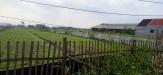 Tanah di daerah MALANG, harga Rp. 1.200.000,-