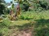 Tanah di daerah BATU, harga Rp. 2.700.000,-