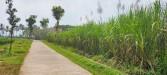 Tanah di daerah MALANG, harga Rp. 400.000,-
