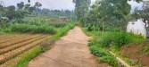Tanah di daerah BATU, harga Rp. 900.000,-