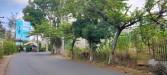 Tanah di daerah BATU, harga Rp. 2.000.000.000,-