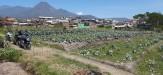 Tanah di daerah BATU, harga Rp. 2.800.000,-