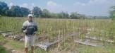 Tanah di daerah BATU, harga Rp. 1.200.555,-
