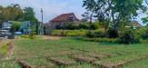Tanah di daerah BATU, harga Rp. 1.100.000.050,-