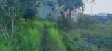 Tanah di daerah BATU, harga Rp. 1.200.525,-