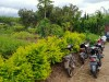 Tanah di daerah BATU, harga Rp. 2.400.110,-