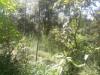 Tanah di daerah MALANG, harga Rp. 135.000,-