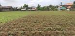 Tanah di daerah BANDUNG, harga Rp. 3.500.000,-