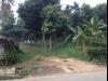 Tanah di daerah BOGOR, harga Rp. 1.500.000,-