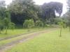 Tanah di daerah JAKARTA SELATAN, harga Rp. 245.000.000.000,-