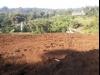 Tanah di daerah MALANG, harga Rp. 80.000.000,-