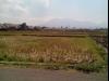 Tanah di daerah MALANG, harga Rp. 2.200.000.000,-