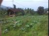 Tanah di daerah BANDUNG, harga Rp. 4.284.000.000,-