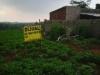 Tanah di daerah SEMARANG, harga Rp. 700.000,-