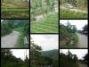 Tanah di daerah BANDUNG, harga Rp. 950.000.000,-