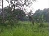 Tanah di daerah BOGOR, harga Rp. 850.000,-