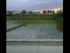 Tanah di daerah BANDUNG, harga Rp. 2.000.000.000,-